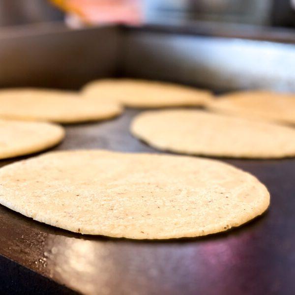 catering tortillas